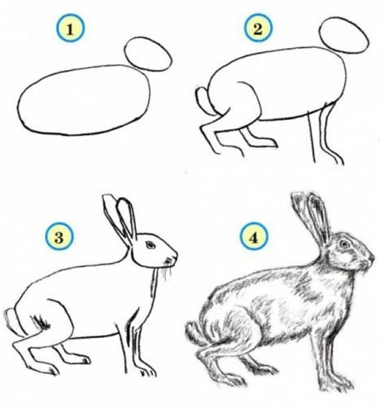 рисовать кролей
