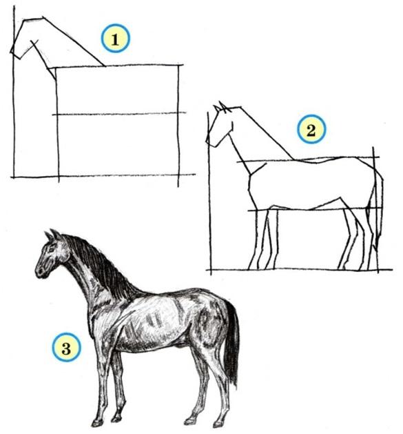 рисовать лошадку
