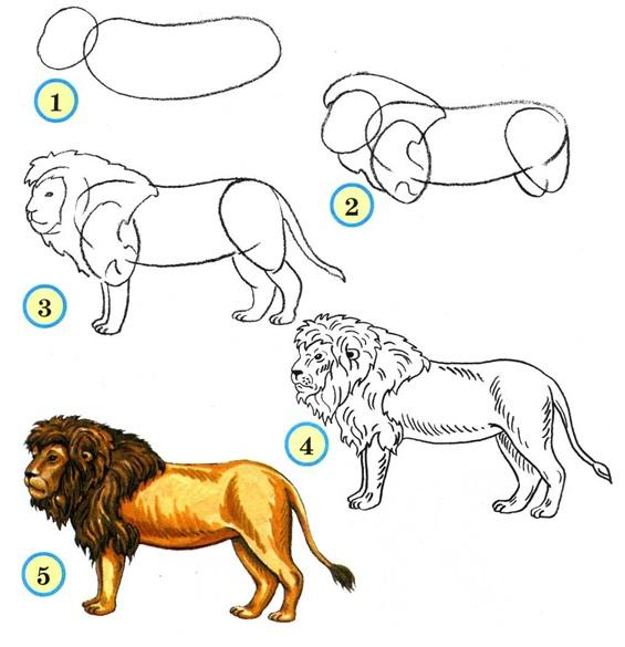 рисовать льва
