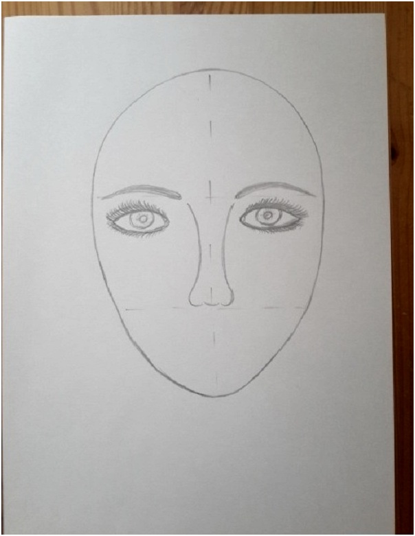 контур носа
