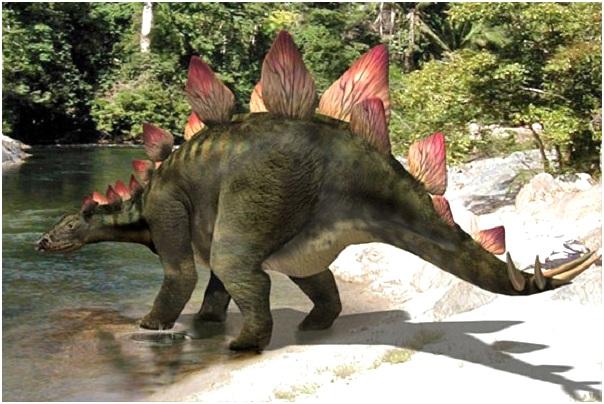 стегозавр в природе