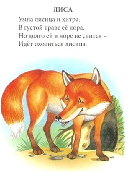 про лисичку