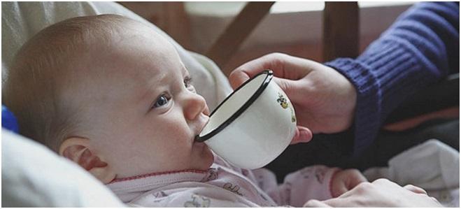 поить из чашки