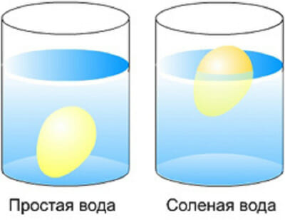 тонет ли яйцо