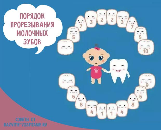 Как режутся зубы у грудничков: признаки и симптомы, как определить