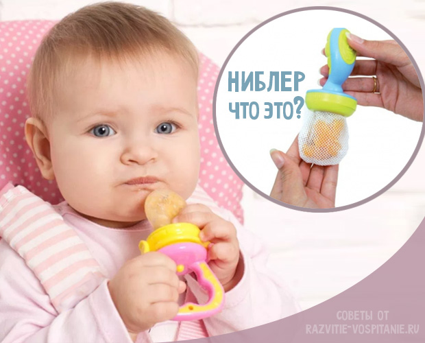 Что такое ниблер для кормления:как выбрать ниблер(фото)